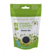 Seminte BIO busuioc pentru germinat 100g Germline