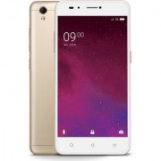 Lava Z60 (1 GB 16 GB Gold)