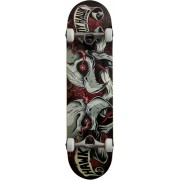 Tony Hawk Skateboard Dual Hawk