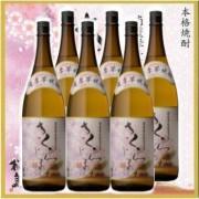 本坊酒造 本格焼酎 さくらじま 1800ml瓶×6本
