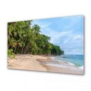 Tablou Canvas Premium Peisaj Multicolor Peisaj cu palmieri pe plaja Decoratiuni Moderne pentru Casa 80 x 160 cm