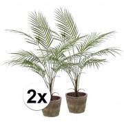 Bellatio flowers & plants 2x Palmboom nep 70 cm groen in pot