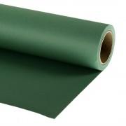 Lastolite Fundal foto verde Grass Green 2.72 x 11m