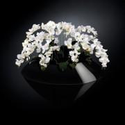 Aranjament floral VENEZIA IN SHINY VASE, negru