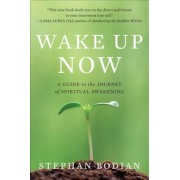 Wake Up Now, Paperback