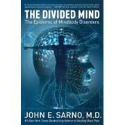 The Divided Mind: The Epidemic of Mindbody Disorders, Paperback/John E. Sarno
