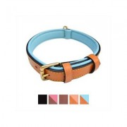 Soft Touch Collars Leather Two-Tone Padded Dog Collar, Tan Teal, Small