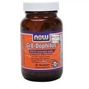 Gr8 Dophilus Gr-8 60 Kapsułek Now Foods