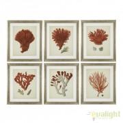 Set de 6 tablouri design LUX Antique red corals 111741 HZ