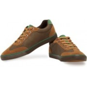 Breakbounce Bern Casual Shoes For Men(Brown, Green)
