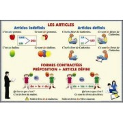 Les articles Formes contractees. Preposition + Article defini /Adjectifs et pronoms demonstratifs