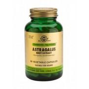 Solgar Astragalus Root Extract 60caps