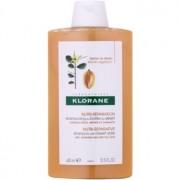 Klorane Dattier champú para cabello castigado y quebradizo 400 ml