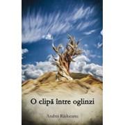 O clipa intre oglinzi/Andrei Raducanu