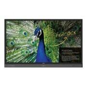 BenQ RP704K-Monitor Interactivo-3840x2160-70'-