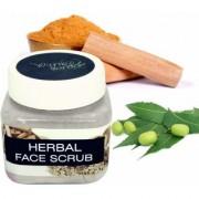 Winnie's Candor Natural Homemade Herbal Face Scrub - 100 Gram (Pack Of 1)