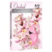 Lumânare pastilă parfumată 6 buc/set aromă orhidee