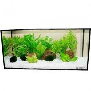 Aquariumplanten Zooplants Lichtgroene Oase - 13 Planten
