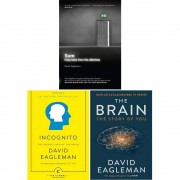 David Eagleman Collection 3 Books Bundle Set (Sum: Tales from the Afterlives, Incognito: The Secret Lives of The Brain, The Brain: The Story of You)