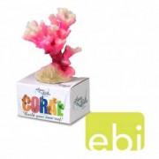EBI AQUA DELLA CORAL MODULE S cauliflower coral white-pink 10x6,8x5,5cm