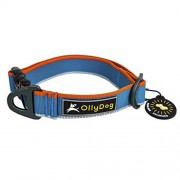 OllyDog Urban Trail Collar Reflectante para Perro, Color Azul Aire, Mediano