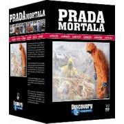Colectia Prada Mortala - 10 DVD-uri