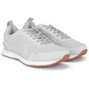Steve Madden Sneakers For Men(Grey)