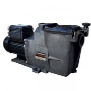 """Hayward Pompe piscine - Super Pump 2 Cv Mono 2"""" - Hayward"""