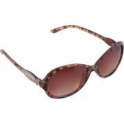 Aligatorr Cat-eye Sunglasses(Brown)