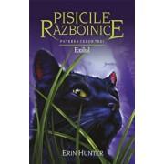 Pisicile Razboinice - Puterea celor trei. Cartea a XV-a: Exilul./Erin Hunter