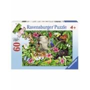 Puzzle Prieteni Tropicali, 60 Piese Ravensburger