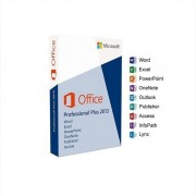 Microsoft Office 2013 Professional Plus 2-Geräte