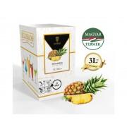 Bag in Box Eldorado ananász szirup 3 liter