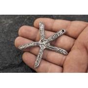 Голяма сребърна морска звезда