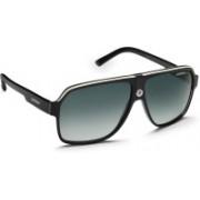 Carrera Aviator Sunglasses(Blue)
