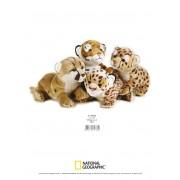Jucarie Plus Venturelli - National Geographic Pui Feline 26 Cm - AV770768