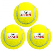 Acorn Cricket Rubber Balls (Pack for 3 with Box) - TOP Quality