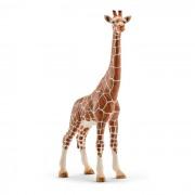 Figurina Schleich Girafa. Femela - 14750
