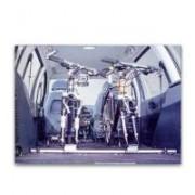 Portabici interno auto Thule indoor 592 alluminio argento
