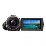 Sony Handycam HDR-CX625 - Camcorder - 10