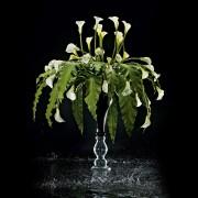 Aranjament floral MAXI ZEUS, 120cm