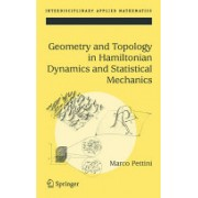 Geometry and Topology in Hamiltonian Dynamics and Statistical Mechanics (Pettini Marco)(Cartonat) (9780387308920)