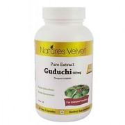 Guduchi 500mg Pure Extract 60 Veg Capsules By Natures Velvet