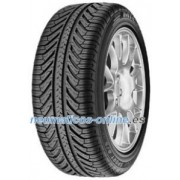 Michelin Pilot Sport A/S Plus ( 255/45 R19 100V , N1 )