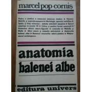 Anatomia Balenei Albe - Marcel Pop-cornis