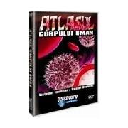 Atlasul corpului uman-Sistemul imunitar