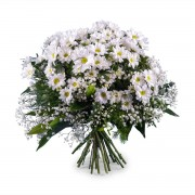 Interflora Ramo de Margaridas Brancas Interflora