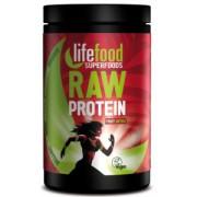 Pudra proteica Fruit Antiox Superfood Raw Bio 450gr