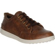Shoe Island ® Popular Polo-X ™ Leatherette Coffee Brown Sneakers Casual Shoes Casuals For Men(Brown)