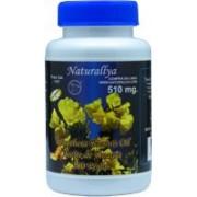 Aceite de Onagra (Oenothera Biennis) 100 Perlas de 510 mgs.